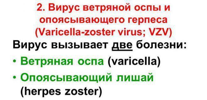 Герпес Varicella Zoster