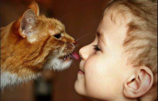 Ребенок и животное
