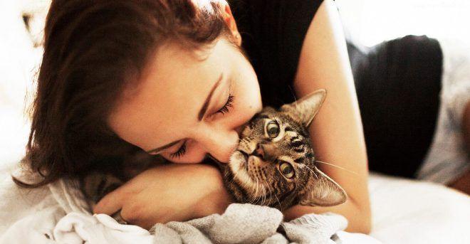 Заболеть можно после контакта с больным животным
